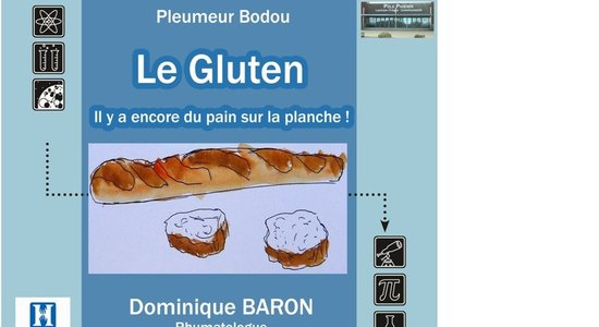 Lg affiche conf rence le gluten